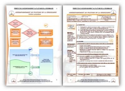 Prestation - Développement social (ISRI)